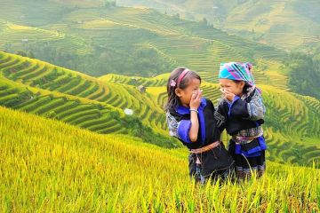 Highlights Of Vietnam With Sapa 13 Days
